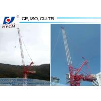 China Design for Korean customers 25m Boom Length 6.0ton Max. Load Luffing Jib Tower Crane wholesale
