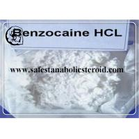 China Local Anesthetic Ingredient Benzocaine Hydrochloride 99% High Purity CAS 23239-88-5 wholesale