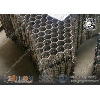 China 310S 2.0X20X50mm  Hex mesh for Refractory Lining   China Hexagonal Grid Factory wholesale