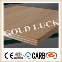 Quality Bintangor / Okoume Faced Commercial Plywood for Furniture (1220X2440mm) for sale