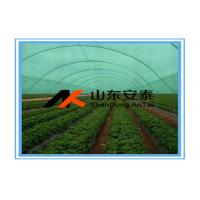 Quality HDPE Raschel Knitted Outdoor Shade Net / Sun Shade Netting Cloth with Shade Rate 10% - 99% for sale