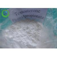 China Testos - ph Testosterone Steroids Testosterone Phenylpropionate 1255-49-8 wholesale