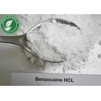 China Local Anesthetic Powder Benzocaine Hydrochloride For Pain Killer CAS 23239-88-5 wholesale