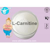China Purity 99% Weight Loss Steroids / L-Carnitine Fat Burner Powder For Women , Cas 541-15-1 on sale