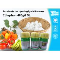 Quality Ethephon 48% SL Plant Growth Regulators To Promote Pre - Harvest Ripening 16672 for sale