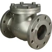 China Performance Swing Check Valve WCB DN100 PN100 , RF /  RTJ / BW End Connection wholesale