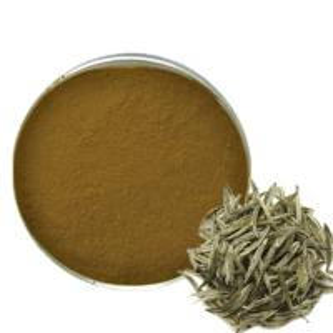 China Antioxidant Green Tea Polyphenols Polyphenols Baicha Powder White Tea Extract wholesale