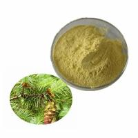 China 99% Assay Dihydroquercetin Taxifolin Standardized Herbal Extracts CAS 480-18-2 wholesale