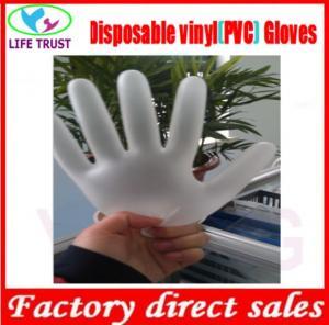 China Powdered Vinyl Glove Powder Free Disposable Examination Vinyl Gloves Disposable Vinyl Gloves; on sale