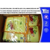 Quality Systemic Fungicide Chlorothalonil 18% + Metalaxyl 8% + Mancozeb 54% WP for sale