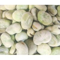 China No Pigment Frozen Fava BeansSauce Cover Healthy Raw Ingredient Good Taste wholesale