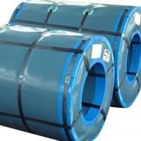 Low Iron Loss Prepainted Galvanized Steel Coil For Roof / Sandwich Panel