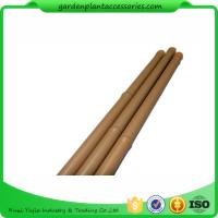 China Heavy Duty Bamboo Garden Stakes , Round Bamboo Stakes For Garden wholesale