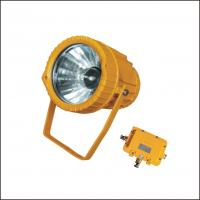 China Stationary Ex-Proof MH / HPS IP65 Floodlight For Electricity Industry Lighting wholesale