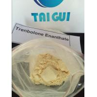 Quality Injectable Trenbolone Steroids Trenbolone Enanthate / Tren E CAS 10161-33-8 for sale