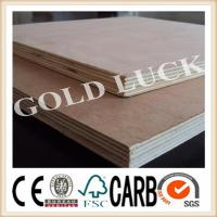 China Furniture Usage Commercial Plywood wholesale
