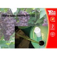 China Alpha-cypermethrin 10% EC Pest control insecticides 67375-30-8 wholesale