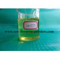 China Safety Cutting Anabolic Steroids , Boldenone Undecylenate Equipoise 13103-34-9 wholesale