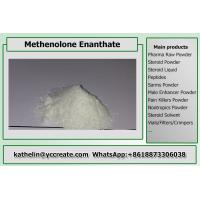 China Steroid Raw Powder Methenolone Enanthate / Primo E For Steroid Cycle CAS 303-42-4 wholesale