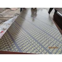China 1220*2440  Shuttering Plywood & brown film faced plywood.UNOPLEX wholesale