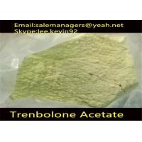 China Cas 10161-34-9 Injectable Anabolic Steroids Trenbolone Acetate Powder / Tren Acetate wholesale