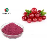 China Health Organic Herbal Extracts Cranberry Fruit Juice Concentrate Powder wholesale