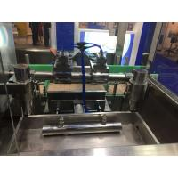 PET Bottle Mineral Water Filling Machine Beverage Filling Plant with 2 Capping Head