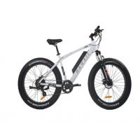 China Comfortable Electric Fat Tire Mountain Bike , Fat Tire Electric Bicycle With Bluetooth wholesale