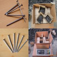 China common iron nail ( factory with competitive price ) wholesale