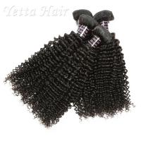 China Wet And Wavy 100 Indian Human Hair Weave With Unprocessed Natural Curly on sale