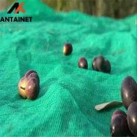 China CE High Quality Low price HDPE green olive net for harvest inChina wholesale