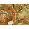 Buy cheap Jade Design Pet Heat Transfer Film Plastic Foil Roll from wholesalers