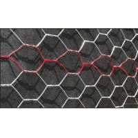 Galvanized Stucco Netting Hexagonal Stucco Mesh Woven Wire