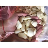 Buy cheap New Crop Frozen Fresh Peeled Garlic from wholesalers
