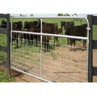 China Fully Welded Hot Dipped Gal. Farm Steel Gates , Liivestock Fence Panels wholesale