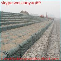 Quality Gabion Wire Mesh/Gabion Cage/Gabion Wall (Factory) for sale