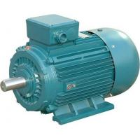 China Low Noise Asynchronous 3 Phase Induction Motor 430hp 2 Pole Electric Motor on sale
