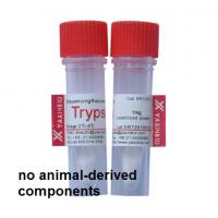China Sequencing Grade Recombinant Trypsin for in-gel Protein Digestion wholesale