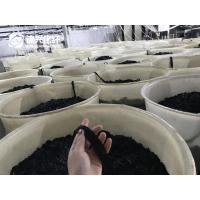 China Polyester Flock Tow Dope Dyed Black 1.5D Bright Flock Fiber 1.5D*0.6mm For Automotive Interior on sale
