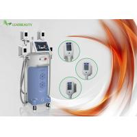 Wholesale Leadbeauty Aesthetic Center 4 Handles Cryolipolysis Slimming Machine , Weight Loss Equipment from china suppliers