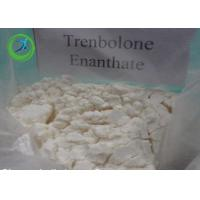 China Anabolic Trenbolone Fat Burning Steroid / Trenbolone Enanthate CAS 472-61-5 wholesale