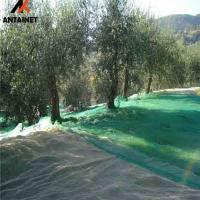 China HDPE high quality green olive net for harvest wholesale