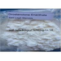 China Bodybuilding Raw Steroid Powders Drostanolone enanthate CAS 472-61-145 wholesale