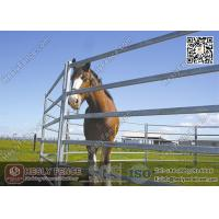 China 1.8X2.1m Oval Pipe Welding Steel Horse Panels | HESLY China Horse Panel Supplier wholesale