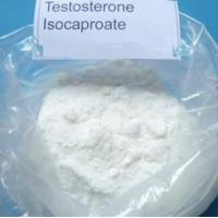 Testosterone Isocaproate Raw Steroid Powders CAS 15262-86-9 for Anti Aging / Cancer Treatment