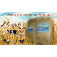 China Yellowish Powdered Complex Poultry Feed Enzymes For Wheat Daily Diet Szym-nutriWH wholesale