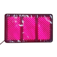 China Infrared Red LED Light Therapy Pads for Body Health Care wholesale