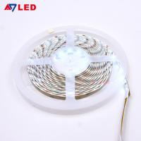 China Adled light led ribbon light smd 2835 leds 12v 24v IP65 dual white color changing cct led strip wholesale