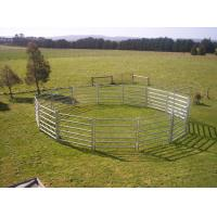 China Portable Horse Stall Panels  40x40 6 Oval Rails. Locking Pins. ,  Victoria , Cattle wholesale