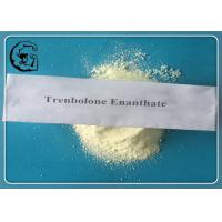 China Trenbolone Enanthate Trenbolone Steroids 99% Muscle Growth CAS 472-61-546 wholesale